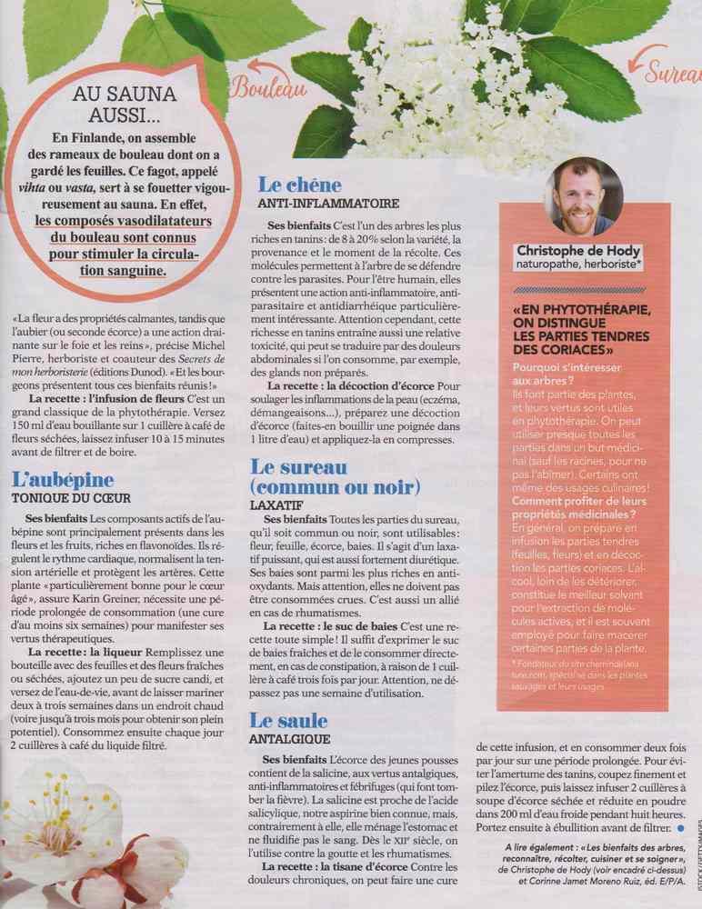 les plantes qui soignent - Page 9 2024