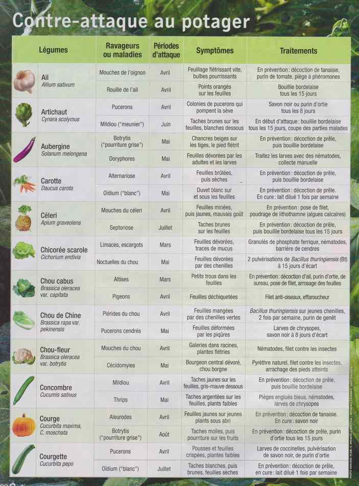 au jardin - Page 28 2102