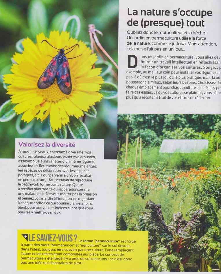au jardin - Page 2 217