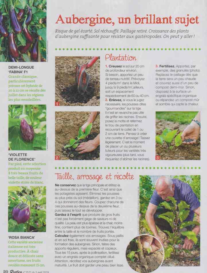 au jardin - Page 2 218