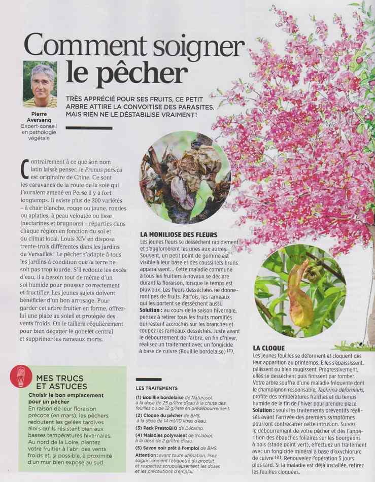 au jardin - Page 4 2210