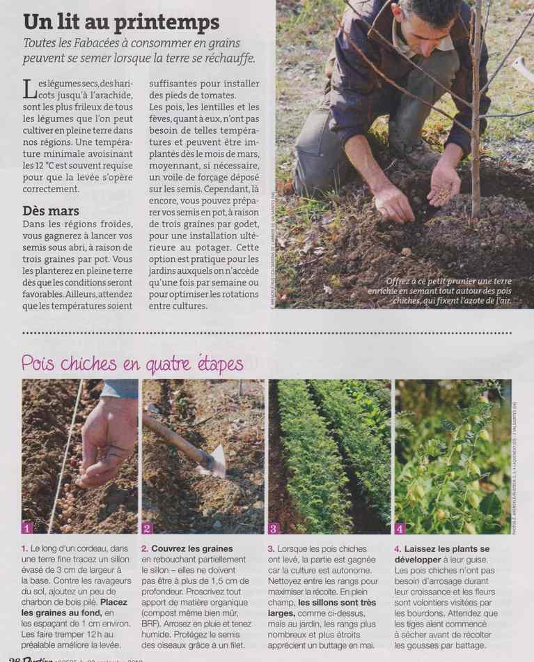 au jardin - Page 12 2211