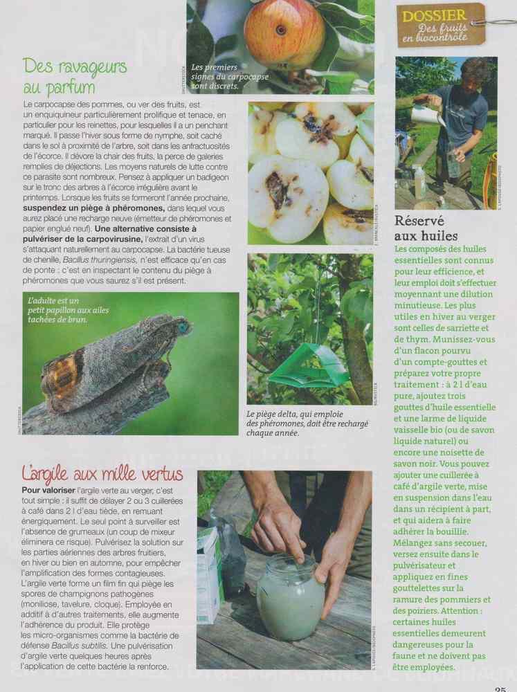 au jardin - Page 16 2218