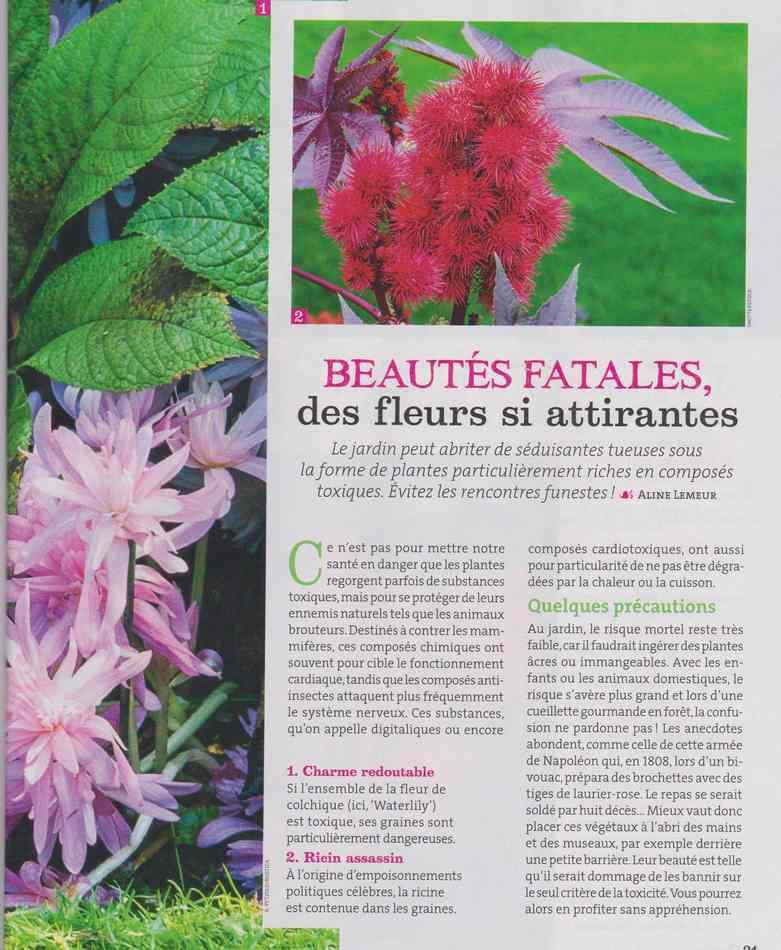 au jardin - Page 3 222