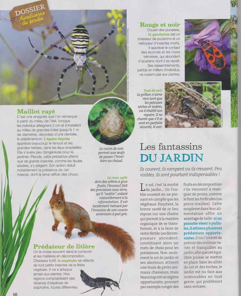 au jardin - Page 5 234