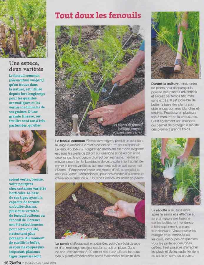 au jardin - Page 7 247