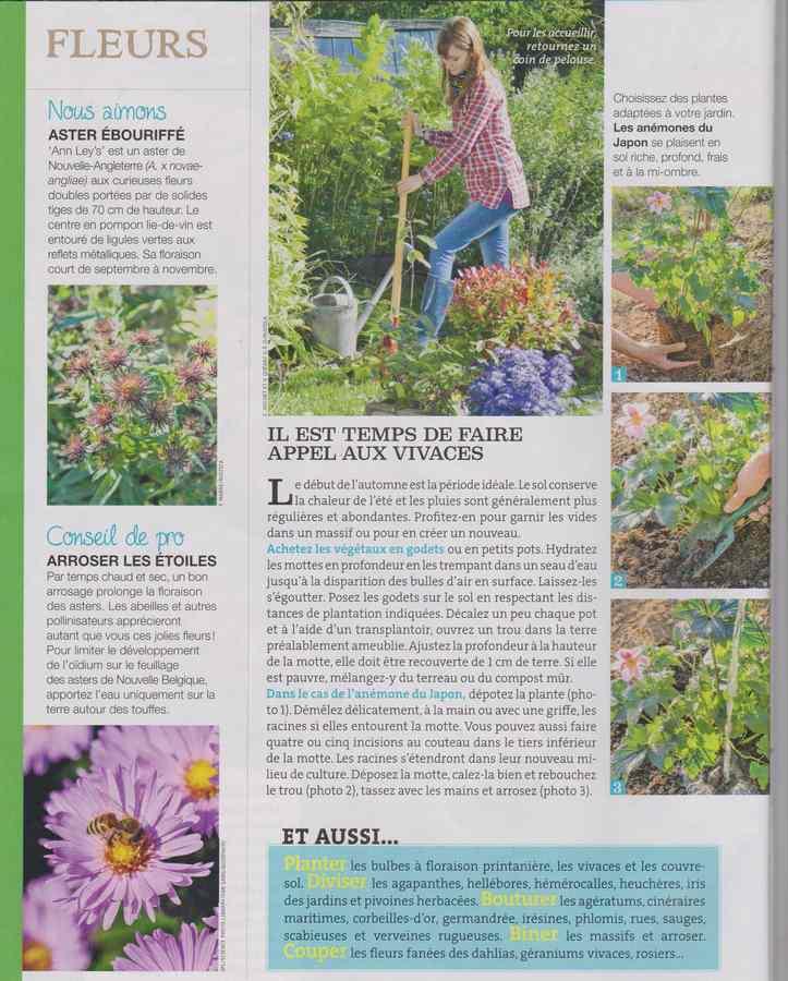 au jardin - Page 11 268