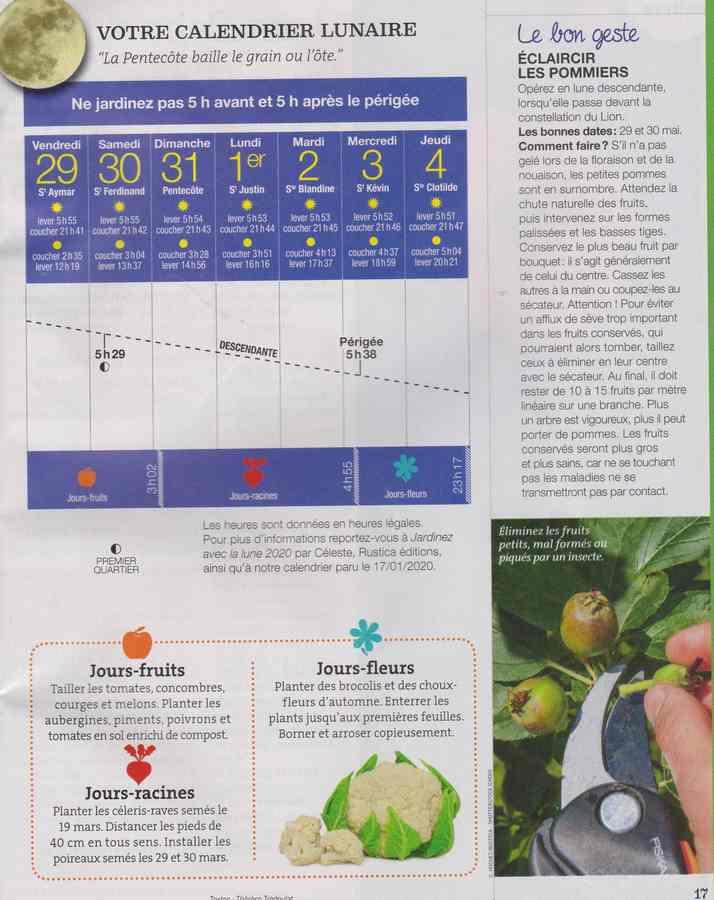 votre calendrier lunaire de la semaine - Page 6 2724