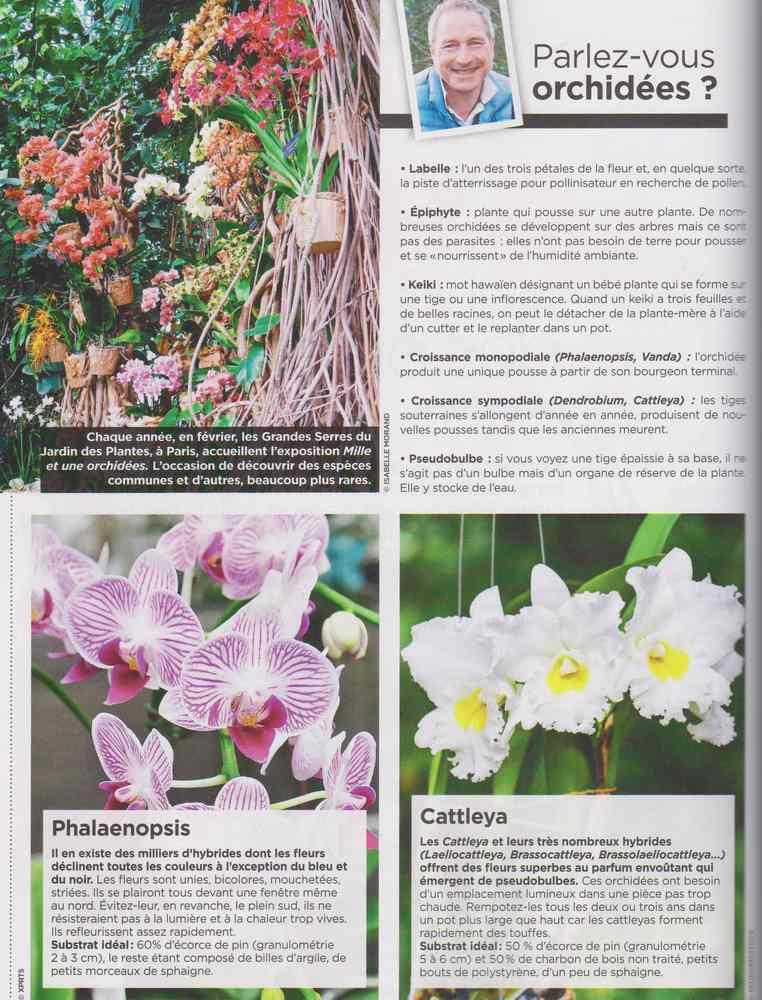 au jardin - Page 17 2813