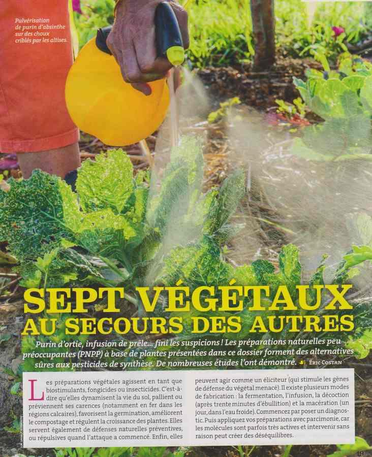 au jardin - Page 36 3107