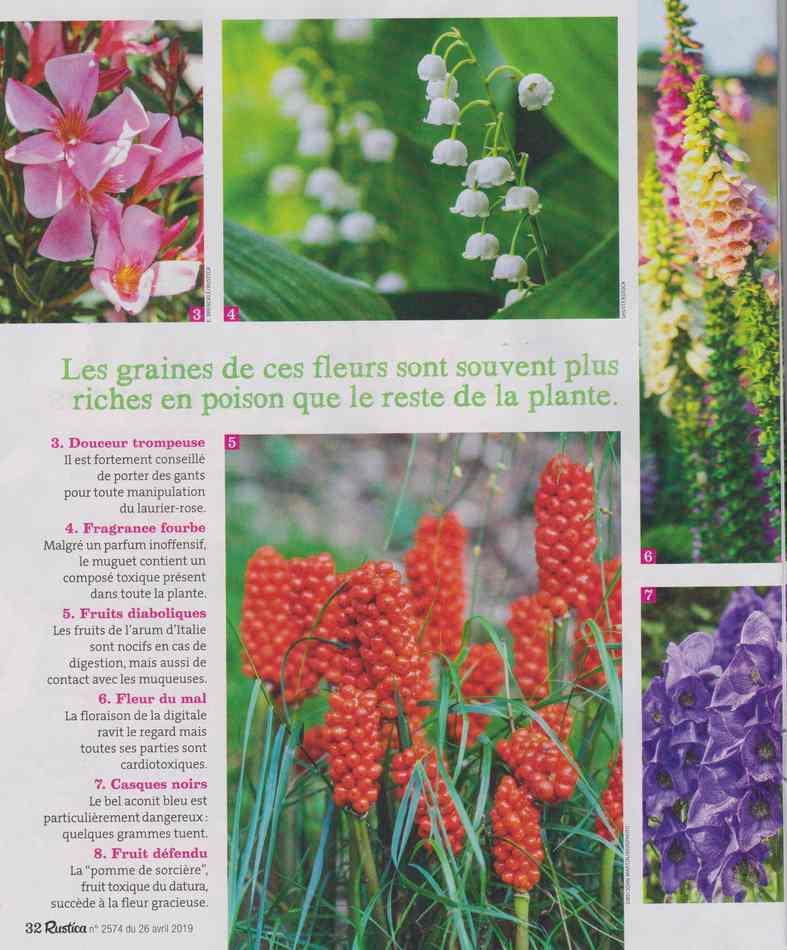 au jardin - Page 4 320
