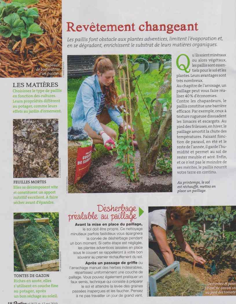 au jardin - Page 5 329