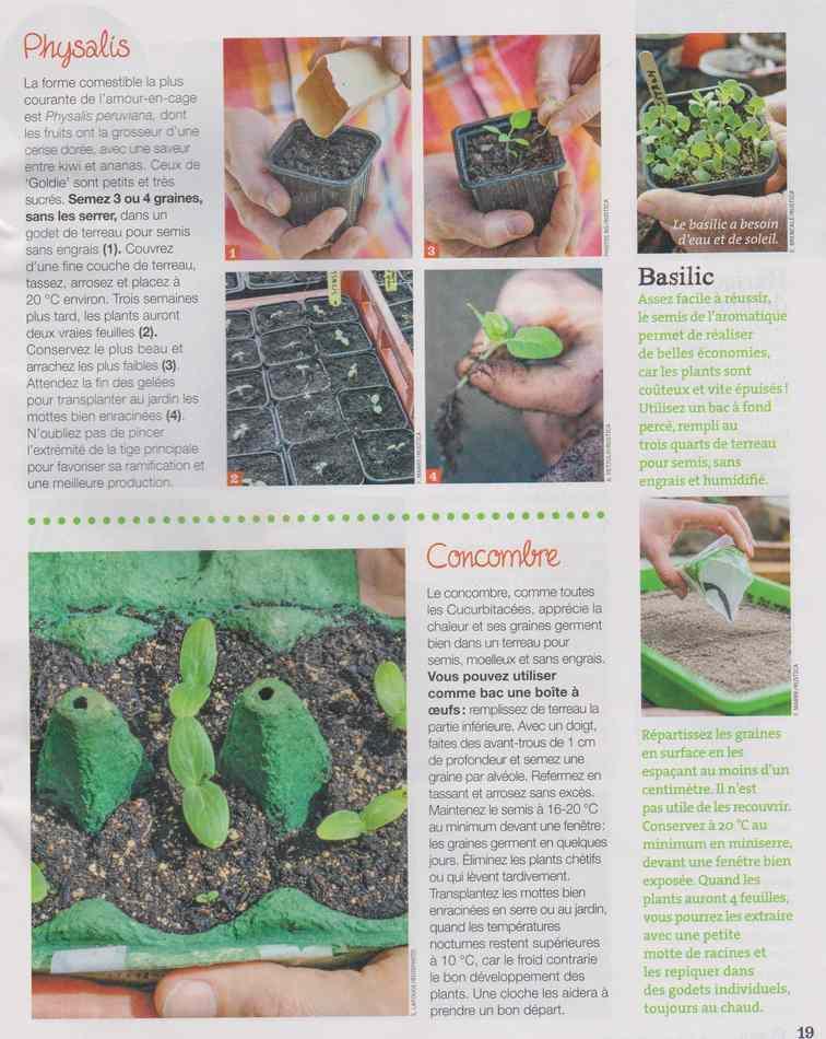 au jardin - Page 28 3413
