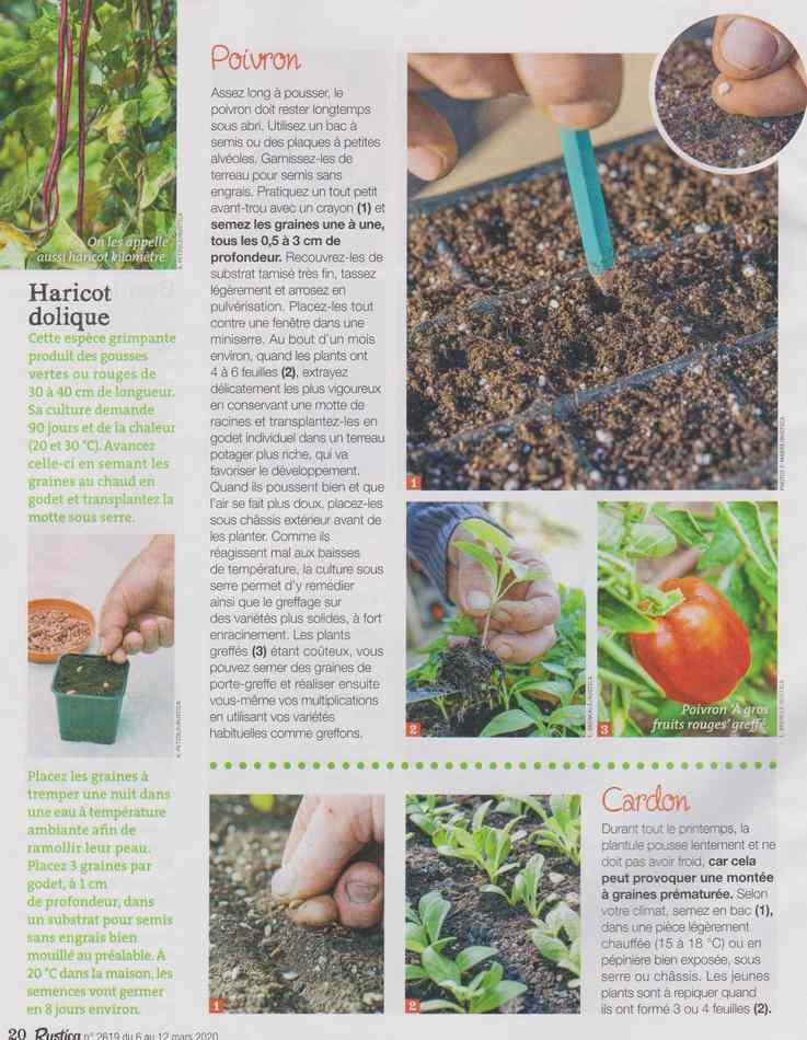 au jardin - Page 28 3516