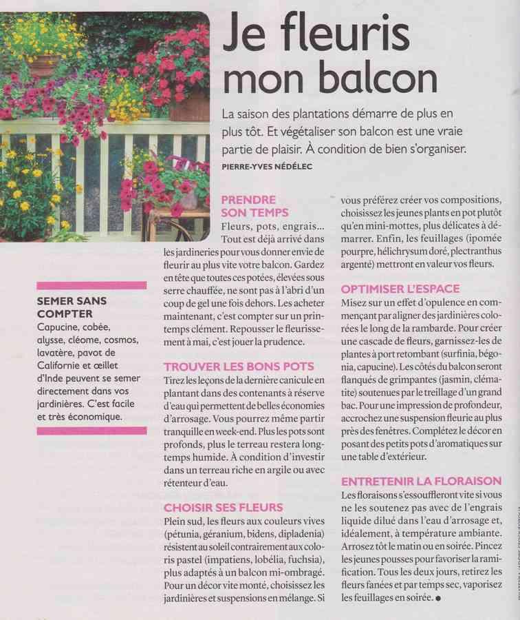 au jardin - Page 34 3519