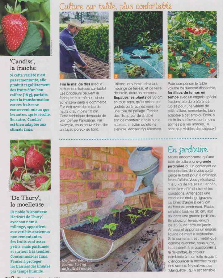 au jardin - Page 11 355