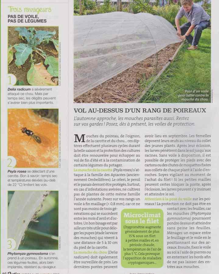 au jardin - Page 11 357