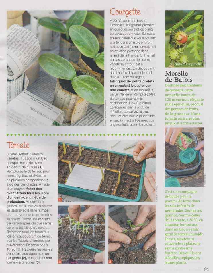 au jardin - Page 28 3616