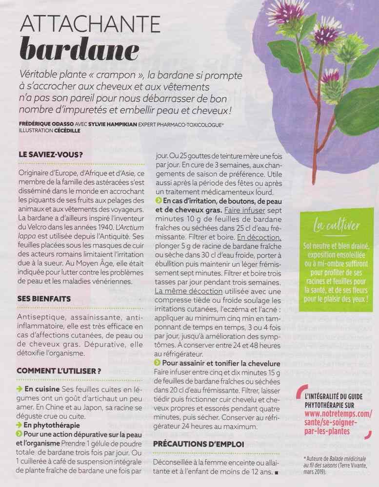 les plantes qui soignent - Page 9 369