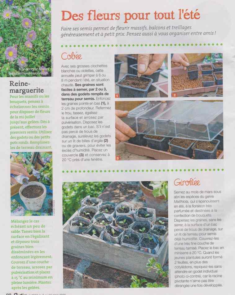 au jardin - Page 28 3716