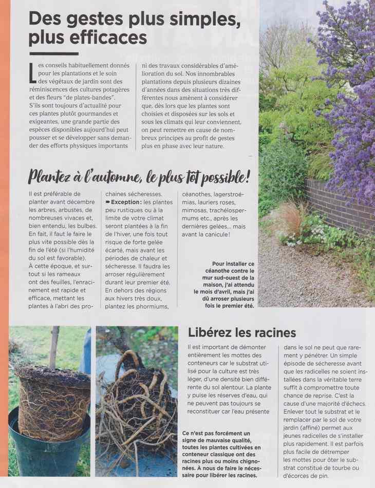 au jardin - Page 18 3812