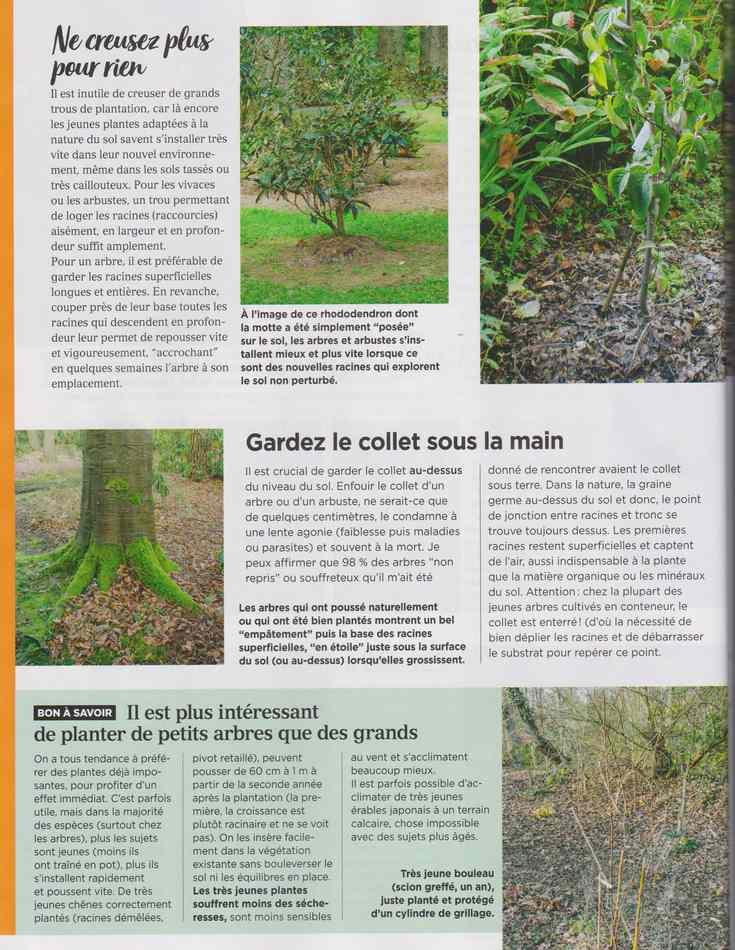au jardin - Page 18 4014