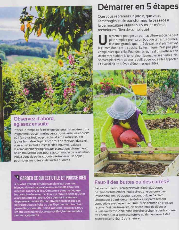 au jardin - Page 2 414