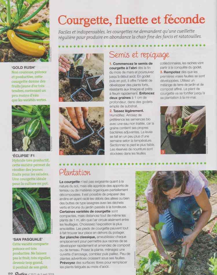 au jardin - Page 3 416
