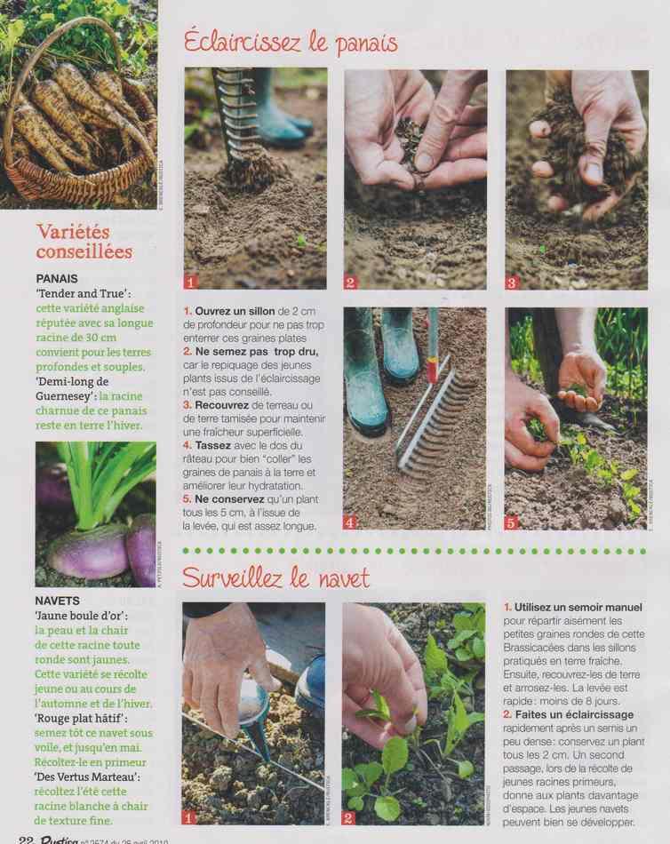 au jardin - Page 3 418
