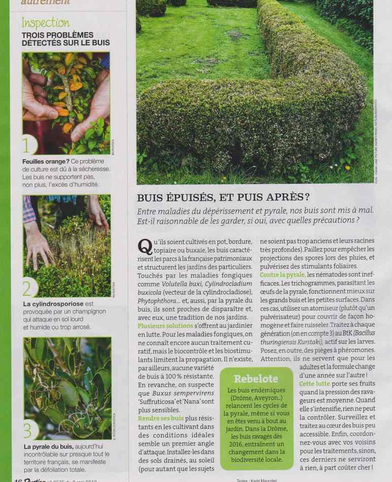 au jardin - Page 4 421