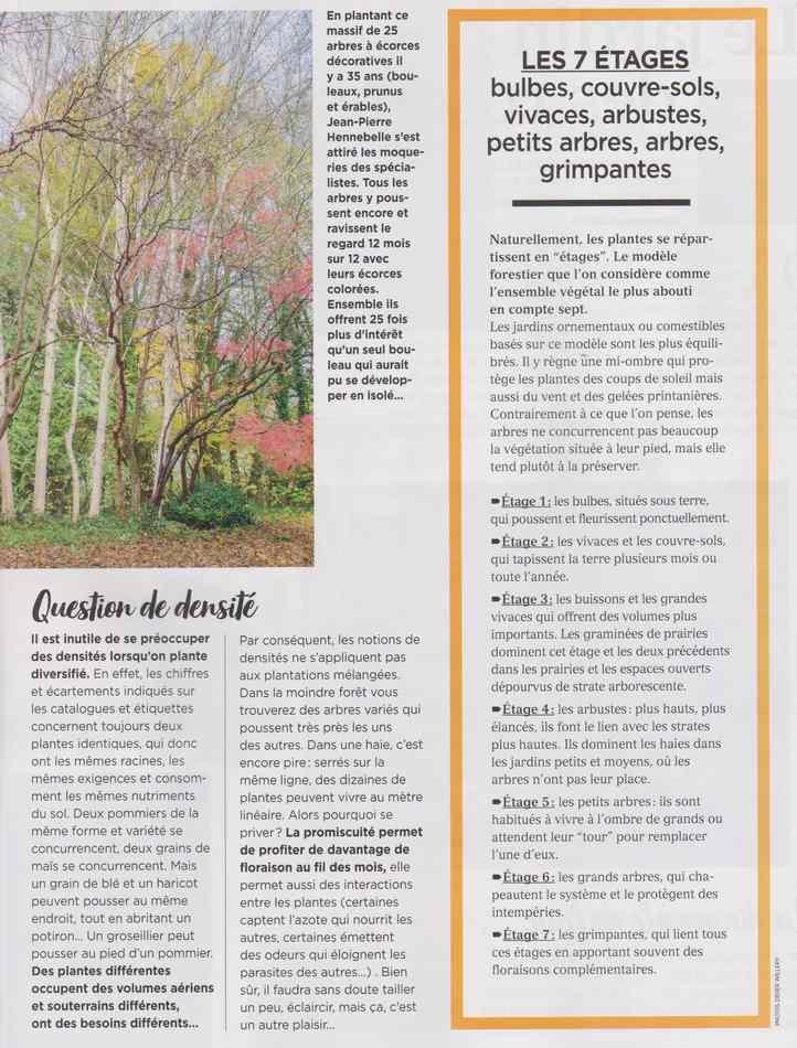 au jardin - Page 19 4312