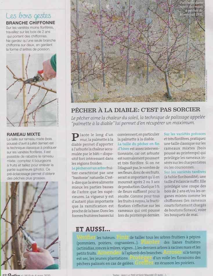 au jardin - Page 30 4316