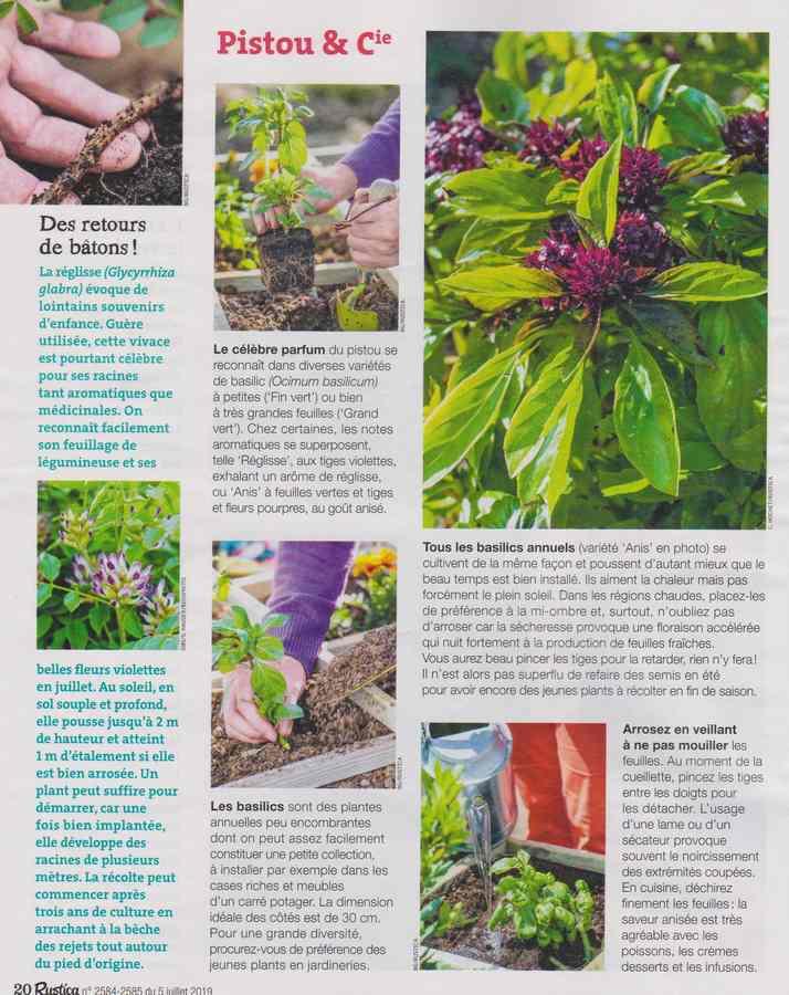 au jardin - Page 7 436