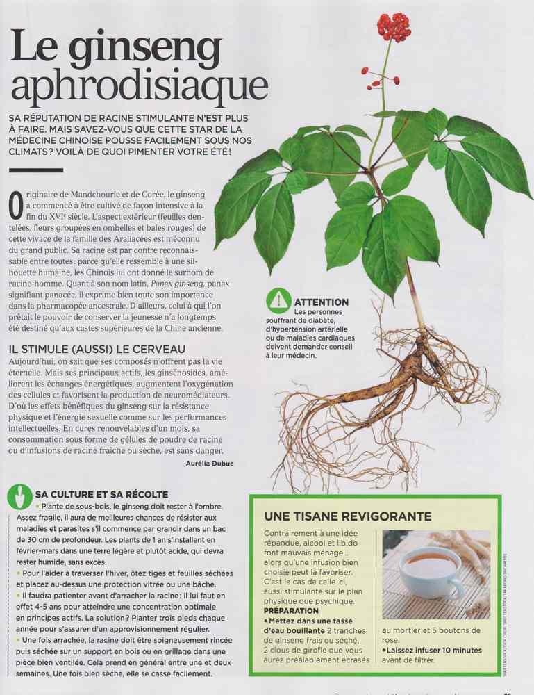 les plantes qui soignent - Page 7 440