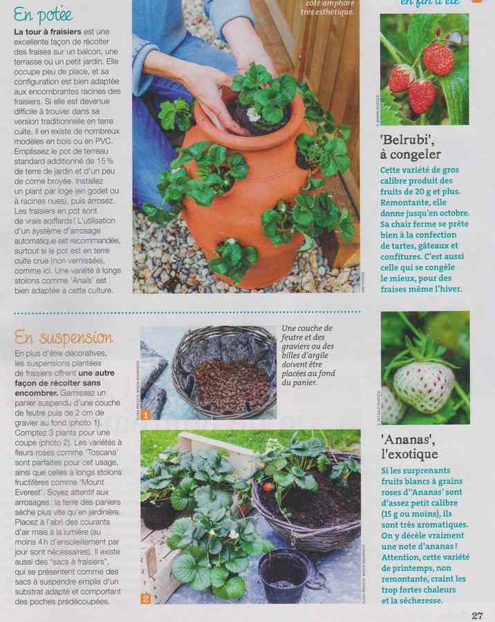 au jardin - Page 11 444