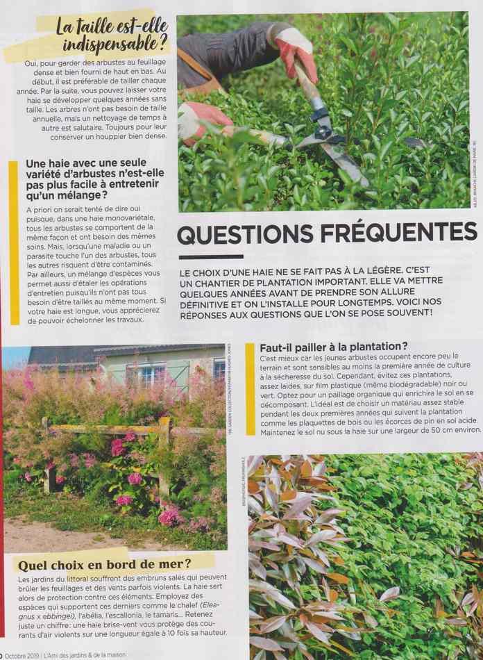 au jardin - Page 12 4510