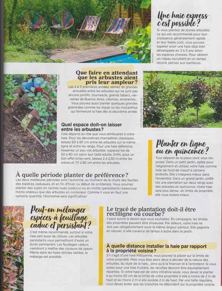 au jardin - Page 12 4610