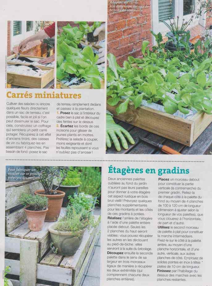 au jardin - Page 30 478