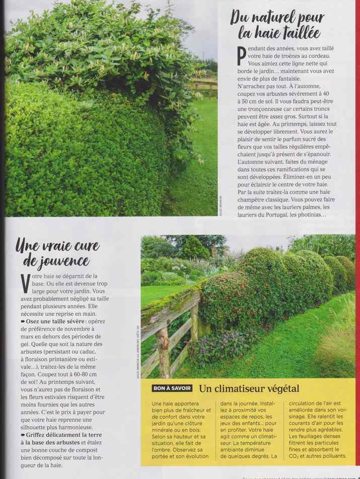 au jardin - Page 12 4810