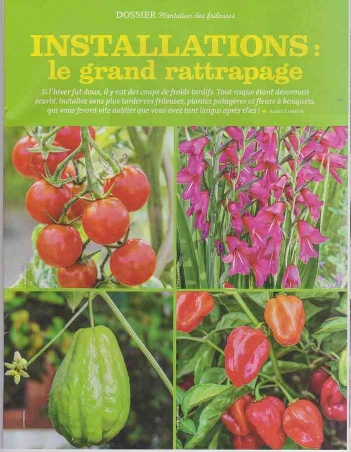 au jardin - Page 34 490