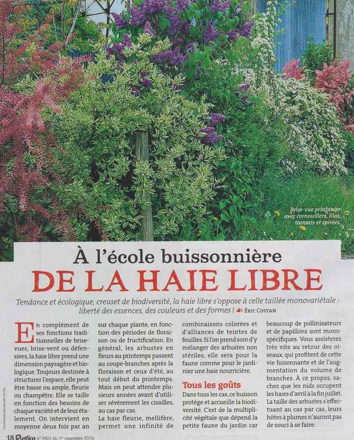 au jardin - Page 18 5010
