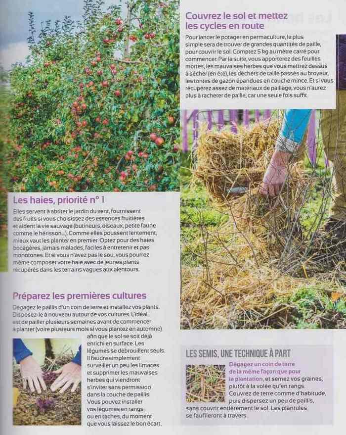 au jardin - Page 2 513