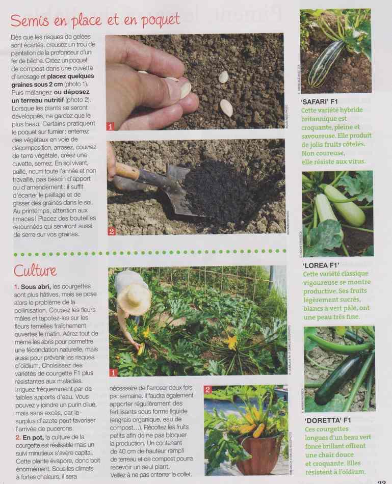 au jardin - Page 3 514