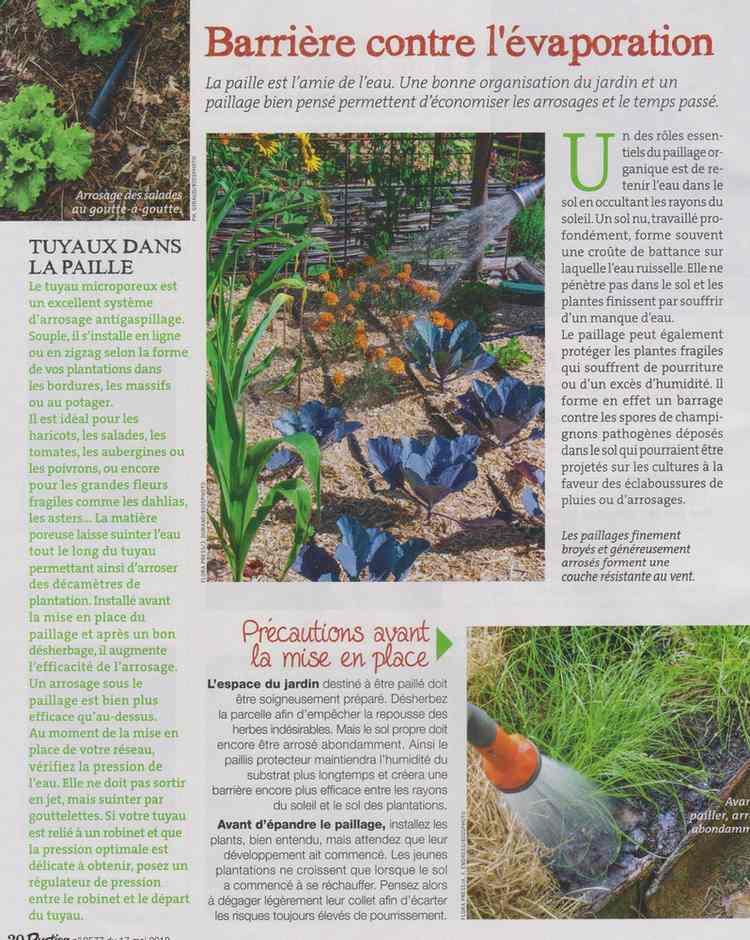 au jardin - Page 5 522
