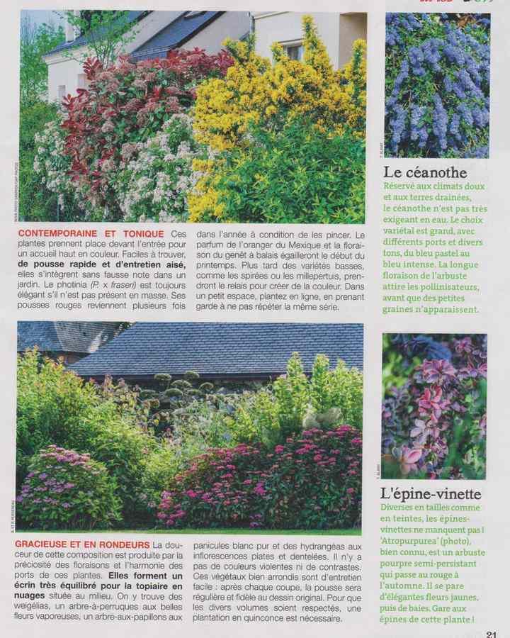 au jardin - Page 18 5310