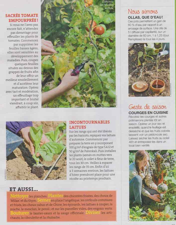 au jardin - Page 11 544