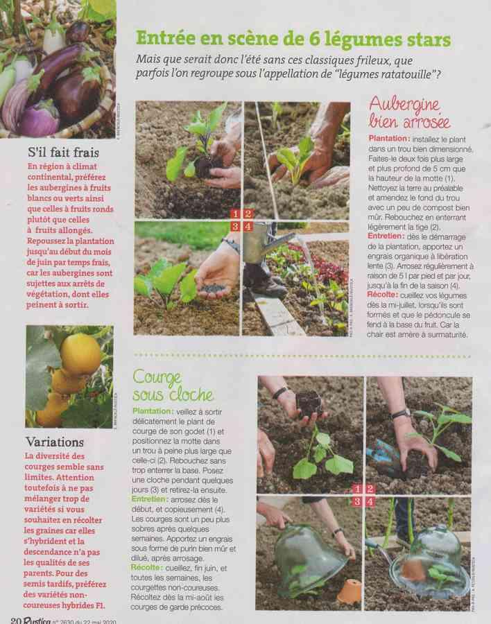 au jardin - Page 34 586