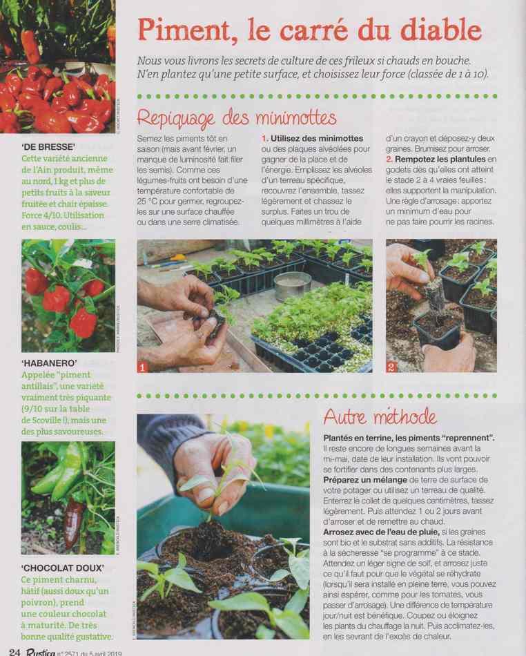 au jardin - Page 3 614