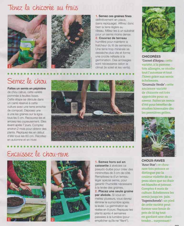 au jardin - Page 3 615