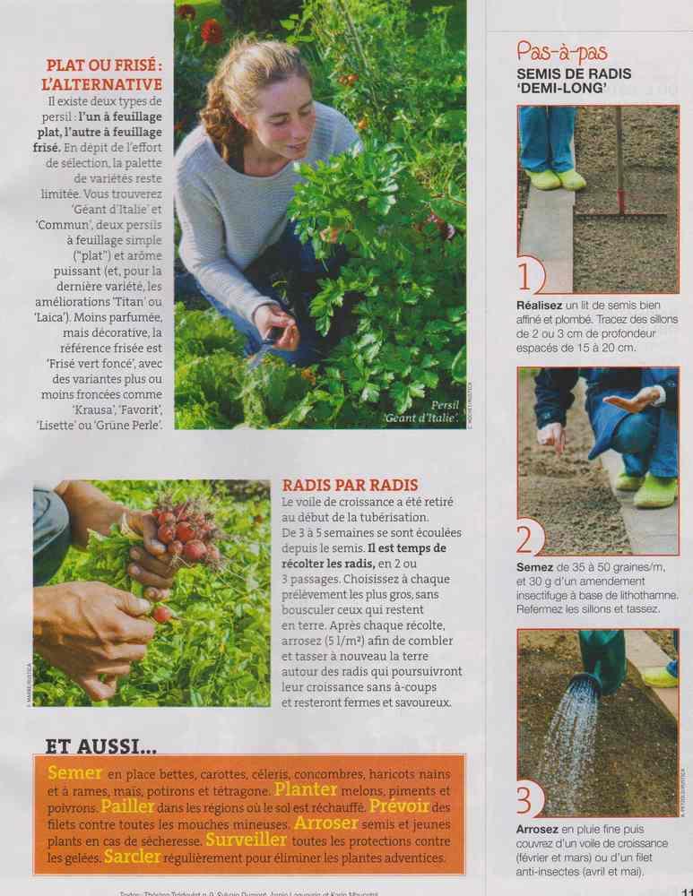 au jardin - Page 4 617